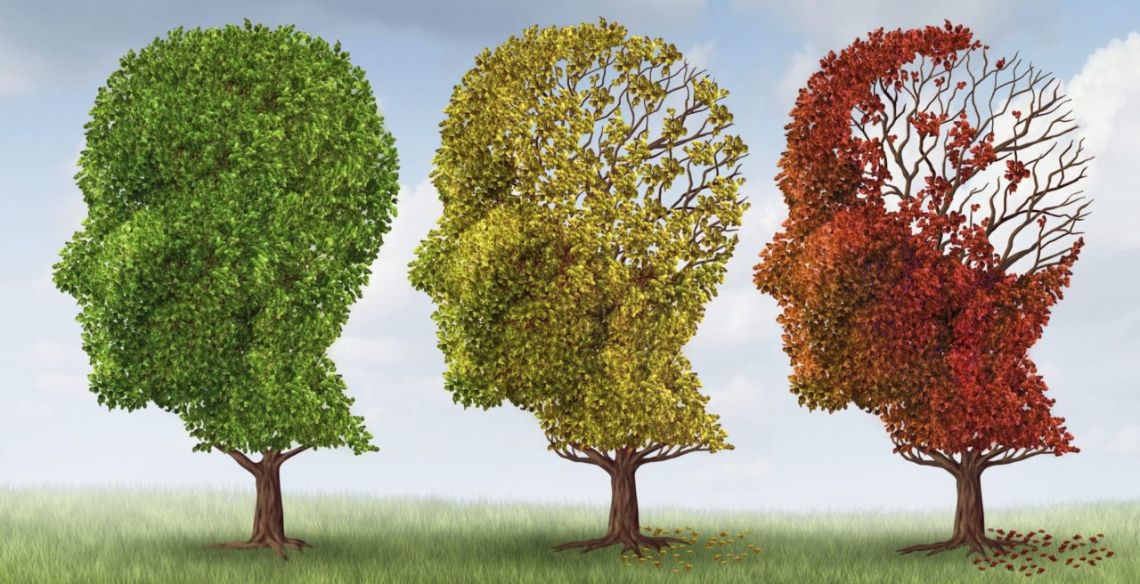 Three trees in various stages of health demonstrating how loss of hearing can cause cognitive decline